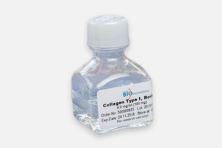 Soluble Collagen